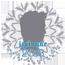 عضو متميز خلال العام 2013